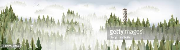 pine forest and watchtower panorama - fog stock illustrations