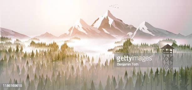 ilustraciones, imágenes clip art, dibujos animados e iconos de stock de bosque de pinos y atalaya panorama - panorámica