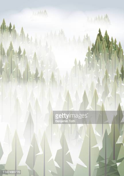 pine forest misty mountains in fog - mountain logo stock illustrations