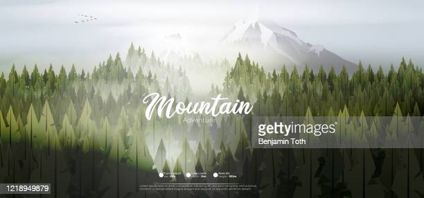 pine forest mountains in mist - mountain logo stock illustrations