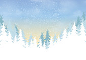 Pine forest on winter season landscape background