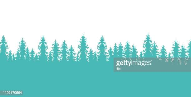 pine forest tree-lined border - forest stock illustrations