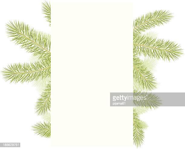 pine tree branch - tannenzweig stock-grafiken, -clipart, -cartoons und -symbole