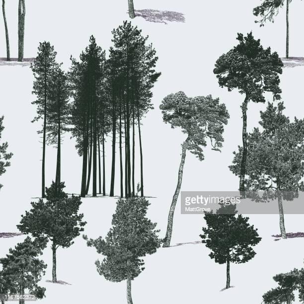 Pine Tree Seamless Repeat Pattern