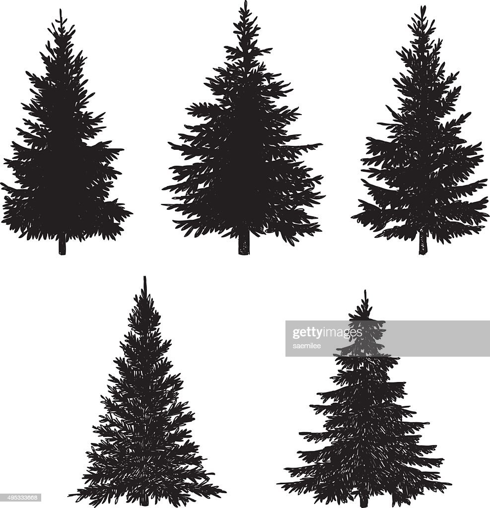 Pine Tree Stock Illustrations And Cartoons