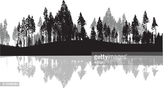 pine trees silhouette background vector art