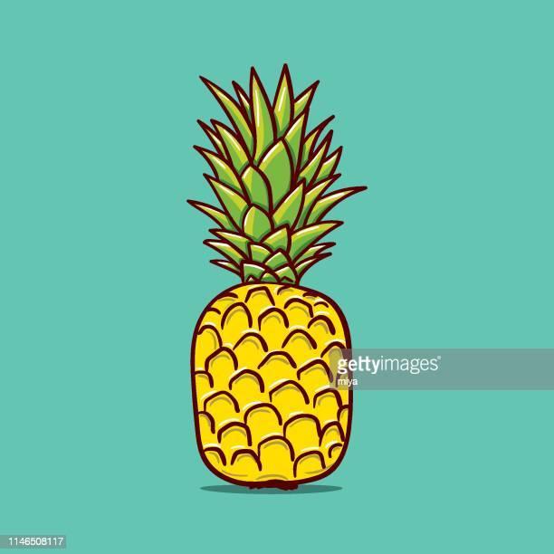 illustrations, cliparts, dessins animés et icônes de illustration de contour d'ananas. vector doodle croquis dessiné à la main illustration - ananas