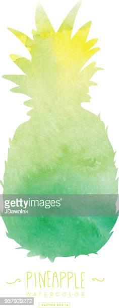 illustrations, cliparts, dessins animés et icônes de silhouette d'ananas avec une texture abstraite aquarelle - ananas