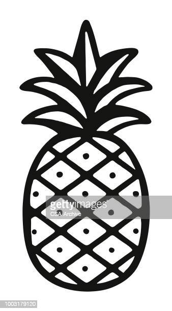 illustrations, cliparts, dessins animés et icônes de ananas - ananas