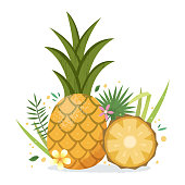 Pineapple with tropical plants and flowers.