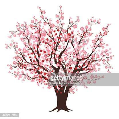 Pink And Red Cherry Blossom Tree In Full Bloom Vector Art ... Almond Tree Clipart