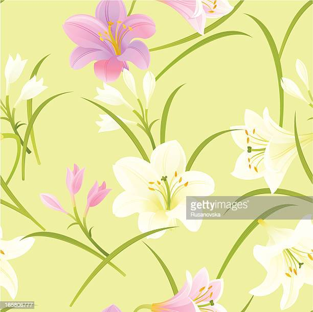 pink and white lilies pattern - easter lily stock illustrations