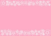 Pink background with decorative stripes align top and below with white outline flowers and leaves