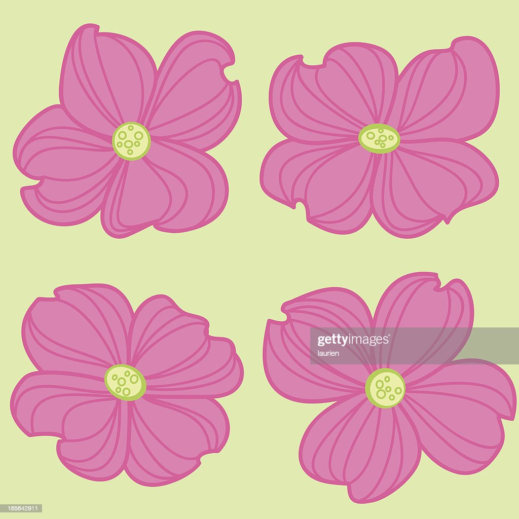 Pink Dogwood Flowers Vector Art Getty Images