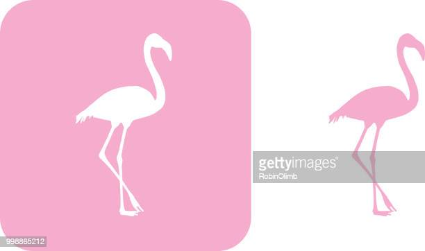 pink flamingo icons - flamingo stock illustrations, clip art, cartoons, & icons