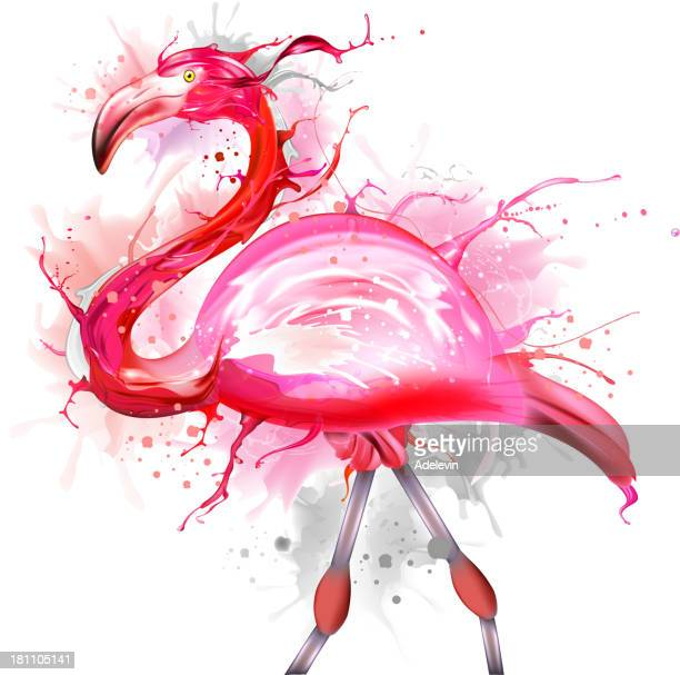 pink flamingos - flamingo stock illustrations, clip art, cartoons, & icons