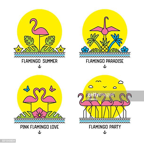 pink flamingos - flamingo stock illustrations, clip art, cartoons, & icons