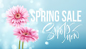 Pink gerbera daisies on a blue bokeh background. Spring sale lettering. Vector illustration