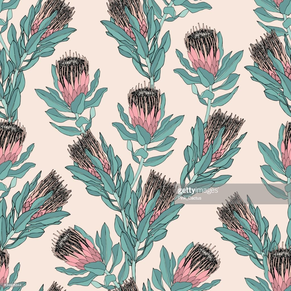 Pink Protea Vector Pattern