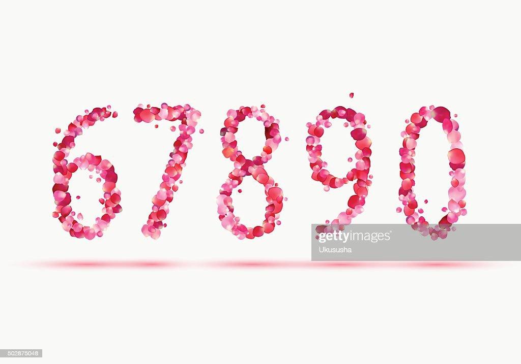 Pink rose petals numeral figures