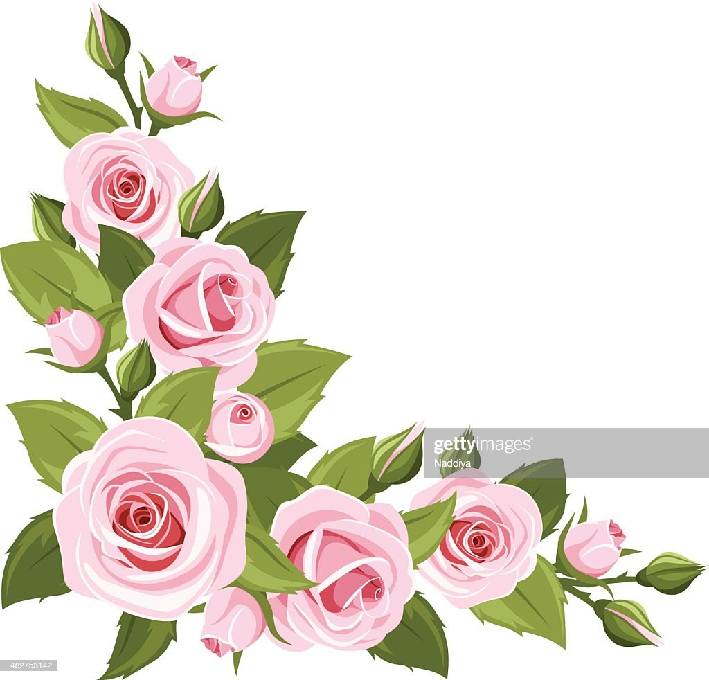 Pink roses. Vector corner background.