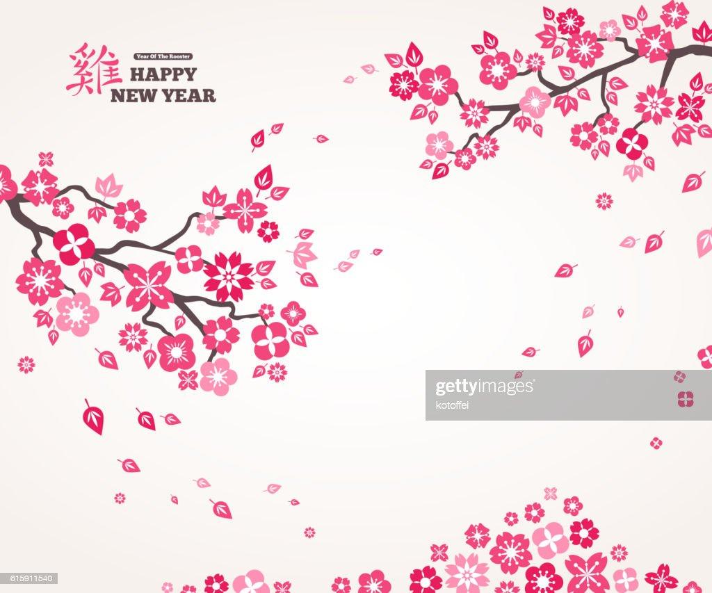 Pink Sakura Flowers on White Background