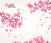 Pink Sakura Flowers on White Background