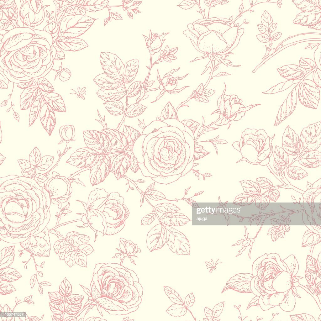 Pink single line rose graphics on white background