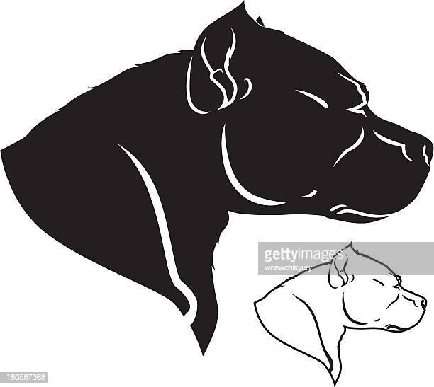 ilustraciones, imágenes clip art, dibujos animados e iconos de stock de pit bull vector - pit bull terrier