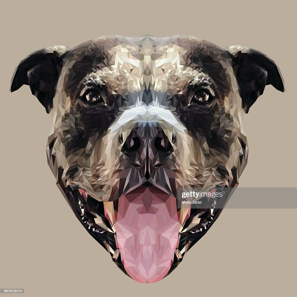 Pitbull dog low poly.
