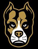 Pitbull dog mascot