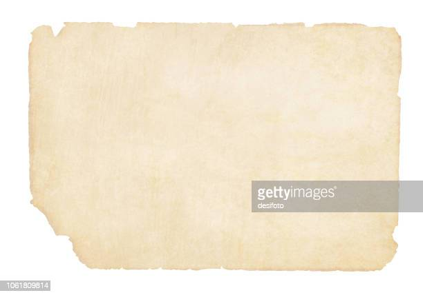 plain  yellowish brown beige grunge paper background vector illustration - crumpled stock illustrations