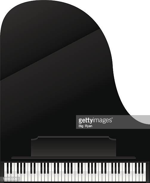 ilustraciones, imágenes clip art, dibujos animados e iconos de stock de de piano - ludwig van beethoven