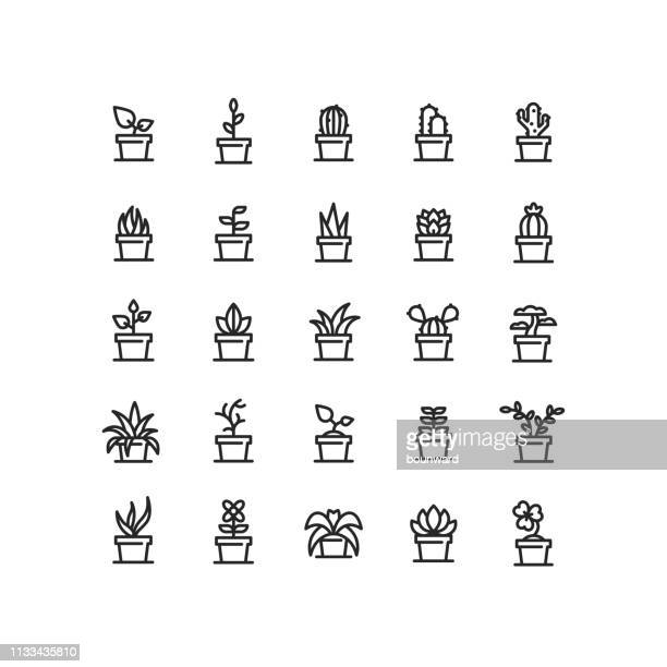plant in pot outline icons - gardening stock illustrations
