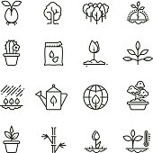 Plant, planting and seed line vector icons. Sprout growing symbols