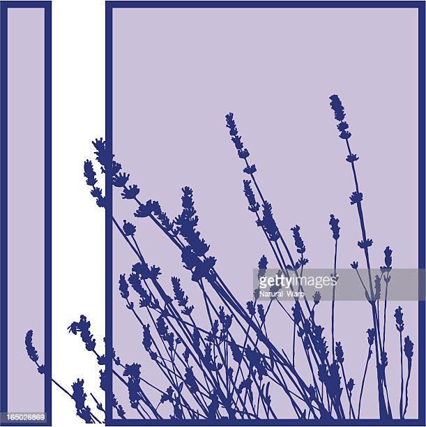 ilustraciones, imágenes clip art, dibujos animados e iconos de stock de silueta de planta - lavanda