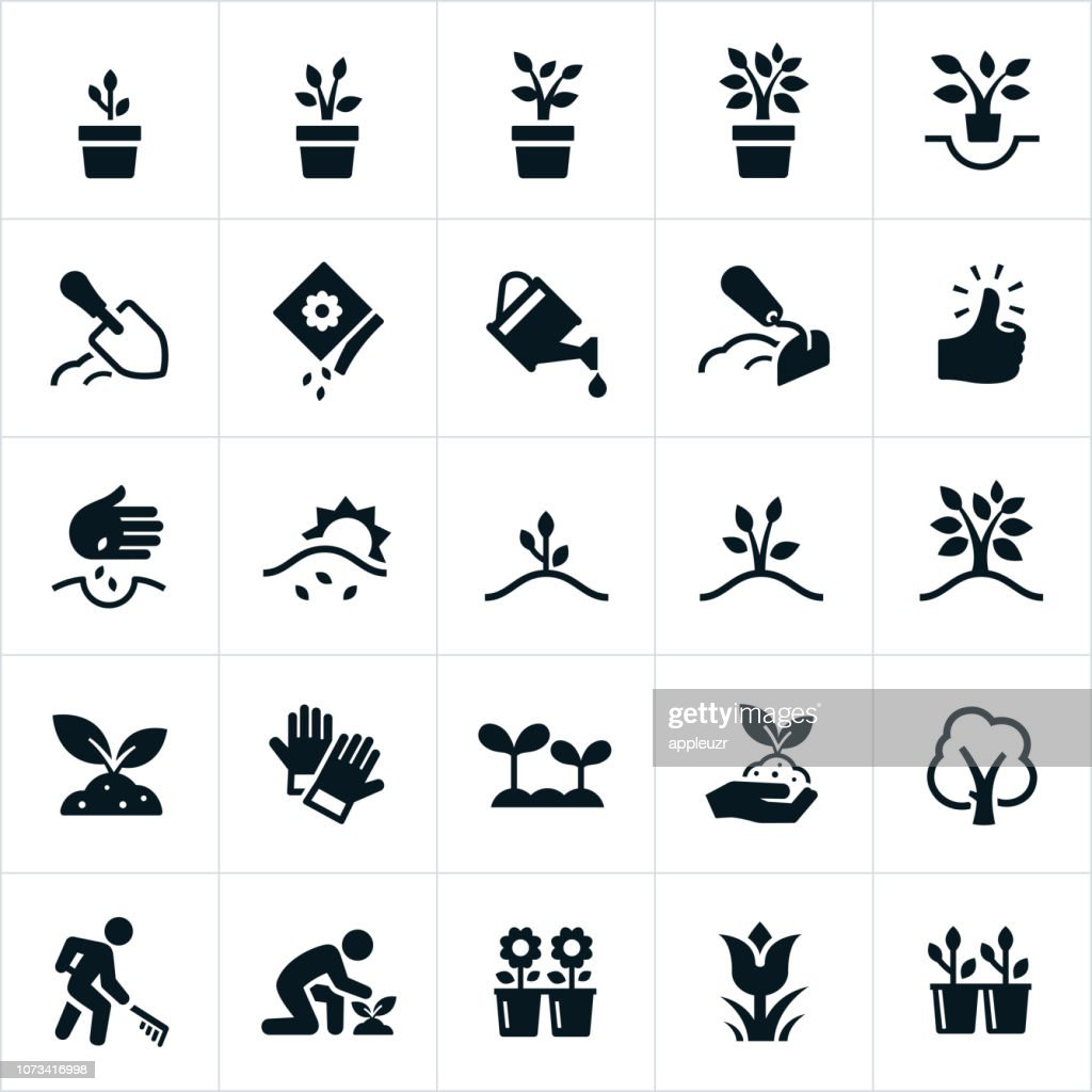 Planting and Growing Icons : Illustrazione stock