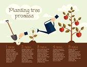 Planting tree process