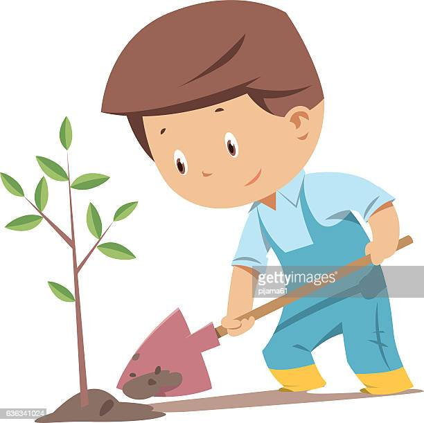 planting tree process - seedling stock illustrations