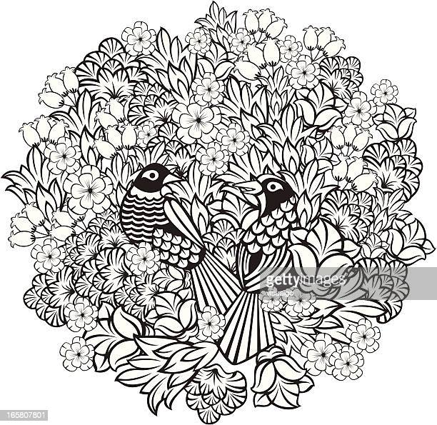 plants and magpies - magpie stock illustrations