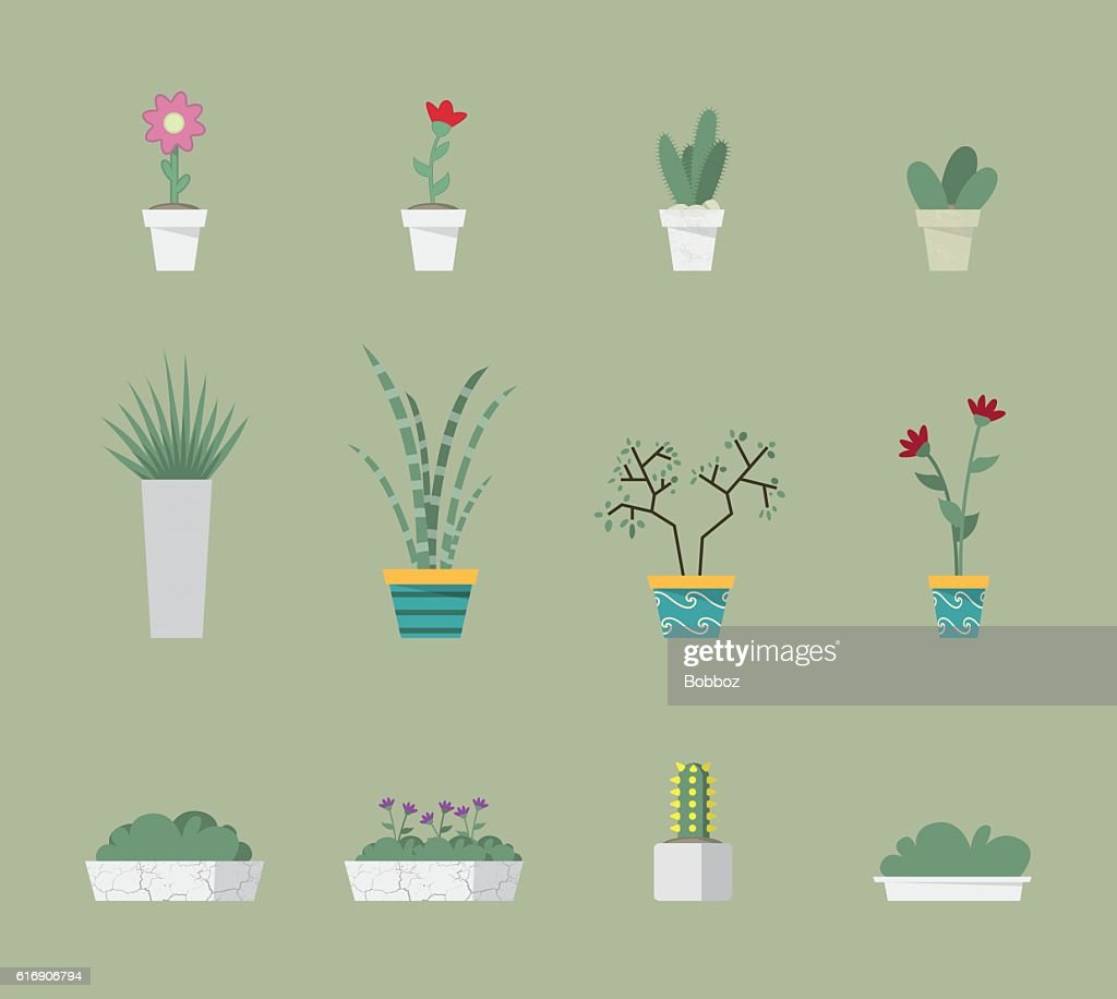 Plants Collection : Vector Art
