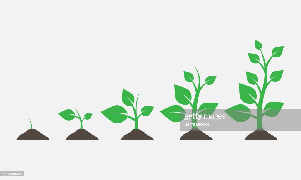 Plants growing in the ground. Vector illustration.