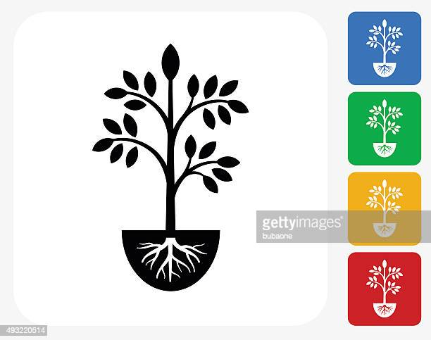 plants icon flat graphic design - root stock illustrations, clip art, cartoons, & icons