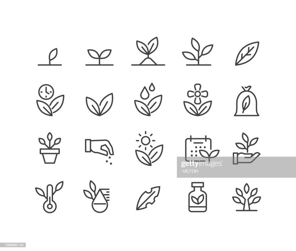 Pflanzen-Ikonen - Classic Line Serie : Stock-Illustration