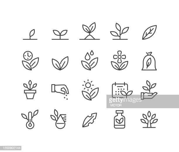 plants icons - classic line series - leaving stock illustrations