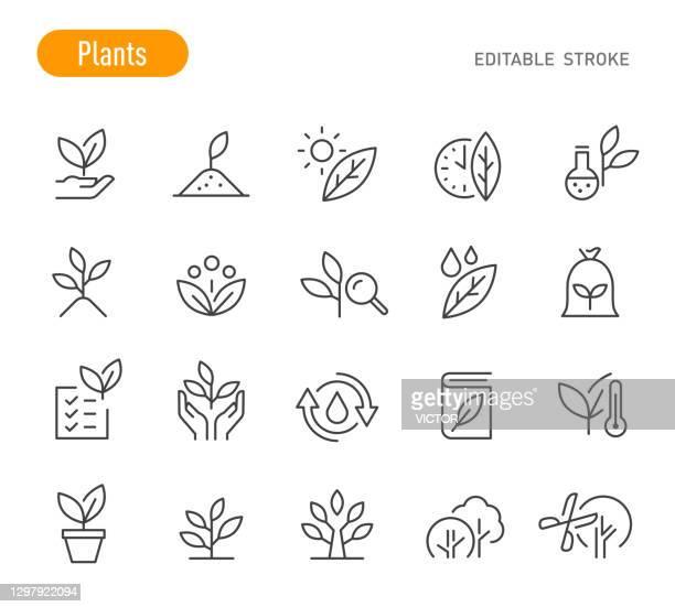 illustrazioni stock, clip art, cartoni animati e icone di tendenza di icone piante - serie linea - tratto modificabile - conservazione ambientale