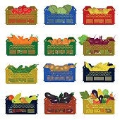 Plastic boxes with vegetables
