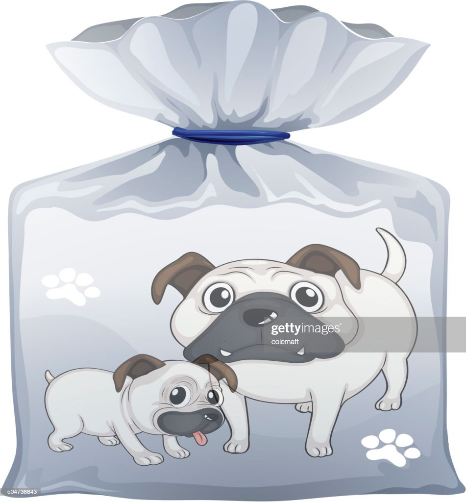 Plastic pouch with a picture of two cute dogs