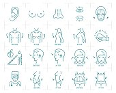 Plastic surgery icons breast augmentation, liposuction, blepharoplasty, rhinoplasty and otoplasty