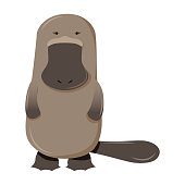 Platypus cartoon character isolated on white background
